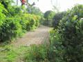 Circuit des hameaux au Sud de Branne