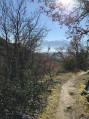 Au-dessus de Molitg-les-Bains