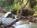 Le Ravin des Infernets