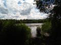 Endroits sauvages le long du lac