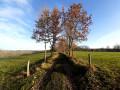 De Faugère à Montignac-Lascaux