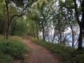 Forêt Domaniale et Aulne maritime à Landévennec