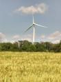 éolienne sur les hauteurs de woelfling
