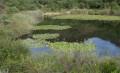 étang Aubert