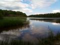Les étangs de Boursault