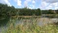 Arques la Bataille ses étangs, la forêt
