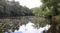Forêt de l'Absie et Bois des Gâts