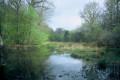 Entre forêt et étangs au départ de l'Étang de Berthommierx