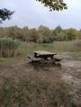 Bois de Montrigaud à Saint-Clair-sur-Galaure