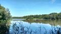 De Champillon à Hautvillers et la Malmaison par les bois et les vignes