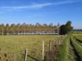 Circuit nature et étang à Lescheroux
