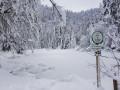 Etang de Sèchemer en hiver