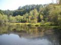 étang de Vaux