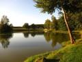 Circuit du Sundgau : La balade des Etangs de Bisel