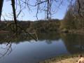 Étang du Trou aux Gants —forêt de Meudon