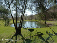 Boucle autour de Lhuis, entre Milieu et Ansolin