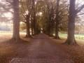 Orne, campagne et châteaux autour d'un ruisseau en Brabant Wallon