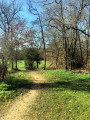Petite boucle familiale en Forêt de Buzet-sur-Tarn