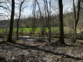 Les rus de Goële et la forêt de Montgé