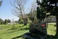 Les six fontaines et le Coll de l'Espinassa depuis Montesquieu-des-Albères