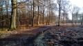 De Valmondois à Presles par la Forêt de l'Isle-Adam et la Pierre Plate