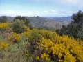 Sur le sentier balcon de la Cougoulère