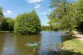 Grand étang de Pointhaie