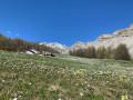 Grange d'alpage