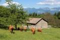 Boucle des granges des Bernades