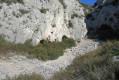 Grotte du Cerf