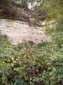 À la recherche des grottes en Forêt Domaniale de l'Isle-Adam