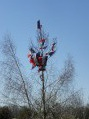 «Honneur à notre élu».la tradition des mais en Dordogne