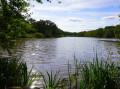 Hors circuit, un deuxième étang