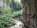 In the gorges