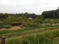 De Pibrac à L'Isle Jourdain par le GR® 653