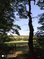 Dans la Forêt de Dreuille à la recherche de la Pierre des Quatre Curés