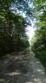 De la vigne à la forêt de Boulogne depuis Mont-Près-Chambord