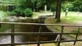 La Rigole par le Lac de Saint-Denis