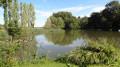 La Sologne des vignobles autour de Fougères-sur-Bièvre
