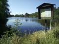 """L'étang au lieu-dit """"La Gravière"""""""
