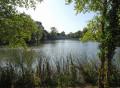La Forêt de Rougeau