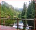 L'étang de Belbriette