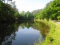 l'étang de la Ville Caro