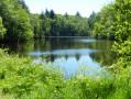 L'étang de Ruffien