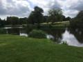 L'étang de Taffarette