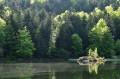 L'étang des Roseaux