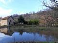 L'étang du vieux moulin