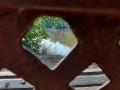 L'étang Ginet