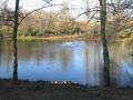 L'étang près du moulin d'Ornon