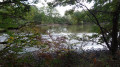 L'étang du Pré du Moulin Daveau